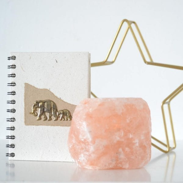 Brass Elephant (3D) Notebook Nude decor